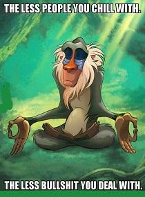 meditatie baviaan_1