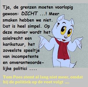 tom poes volgt de politiek