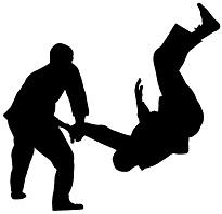 judoka schaduw